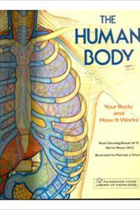 humanbody